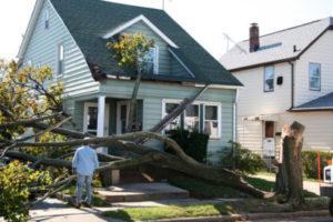 How to Know if Your Roof Has Been Damaged
